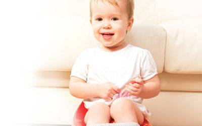 Tots on Pots: Your Guide to Potty Training